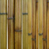 Бамбук термообработанный d 50-60 мм в Москве недорого - BambooCapital