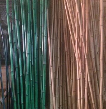 Бамбук зеленый d 18-23мм L=2,1м