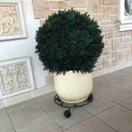 Искусственный шар Туи  арт.0900020