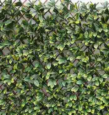 Искусственная изгородь лист Магнолия на деревянной решетке MZ186006A,1 х 2 м