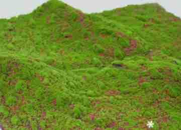 Мох искусственный Оттопыренный MP-012345