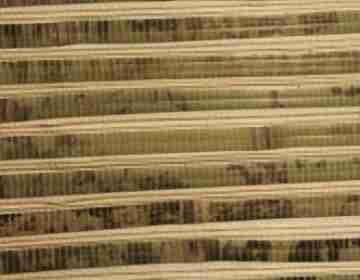 Натуральные обои Бамбук-тростник арт.D-3009L