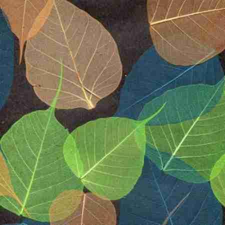 Натуральные обои Листья Прима Верде