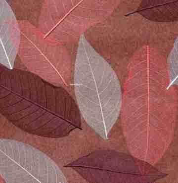 Натуральные обои Листья Прима Росадо