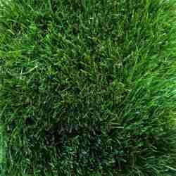 Искусственная трава ED-38-50(50мм)