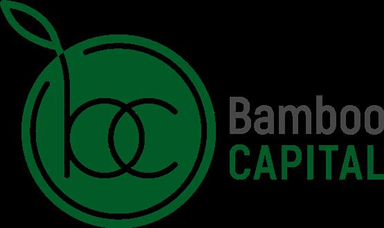 BambooCapital.ru